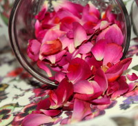 Rose Petals for a Scrub