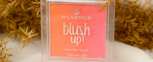 Essence Blush Up Heat Wave Review Swatch (2)